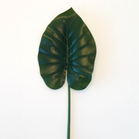 Anthuriumblad