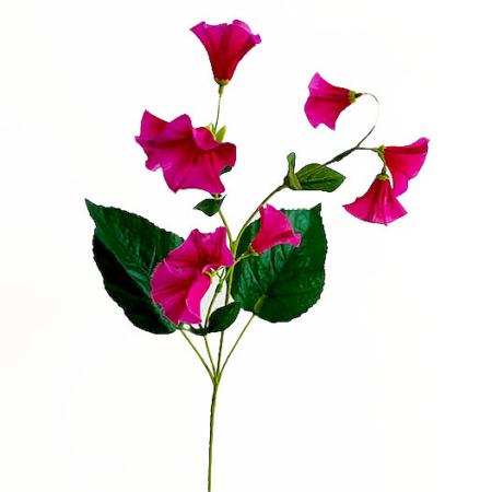 Lisianthus roze
