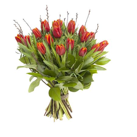 Rode tulpen bestellen Leiden