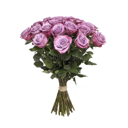 Valentijn paarse rozen Ecuador 70 cm